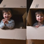 babies-in-cardboard-boxes-2013