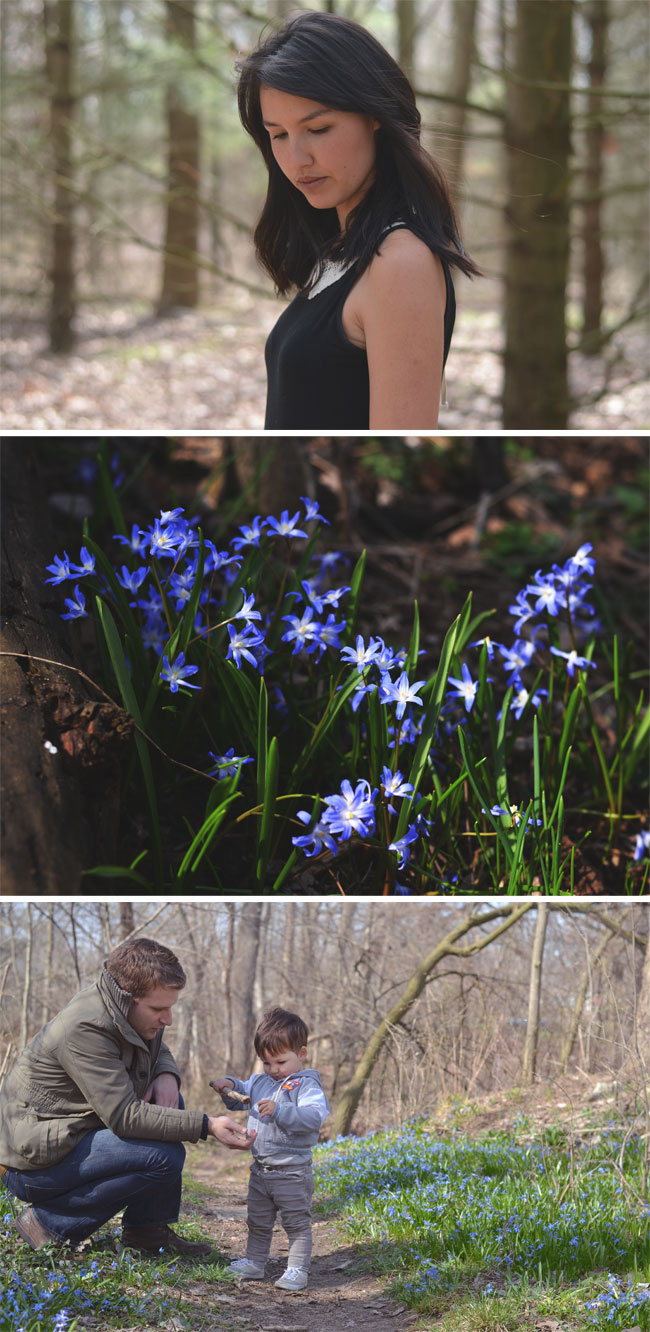 early-spring-collage-post