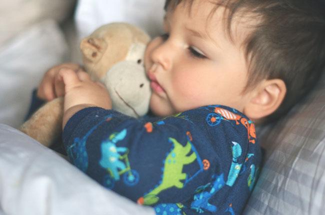 cozy baby monkey