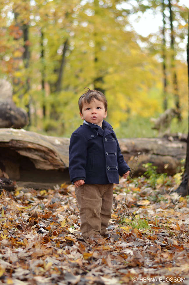 autumn toddler photo