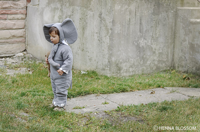 toddler halloween photoshoot: baby elephant costume
